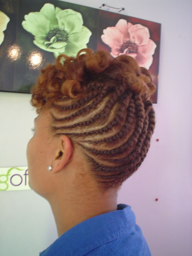Natural Braided Hairstyles For Black Women Updo Hairstyles For African America Everything Natural Hair